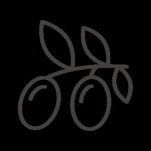 オリーブの実のアイコン