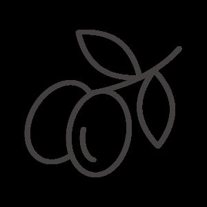 オリーブの実のアイコン02